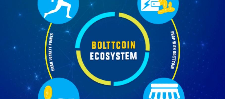 Boltt Ecosystem