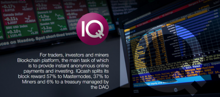 IQ_Cash